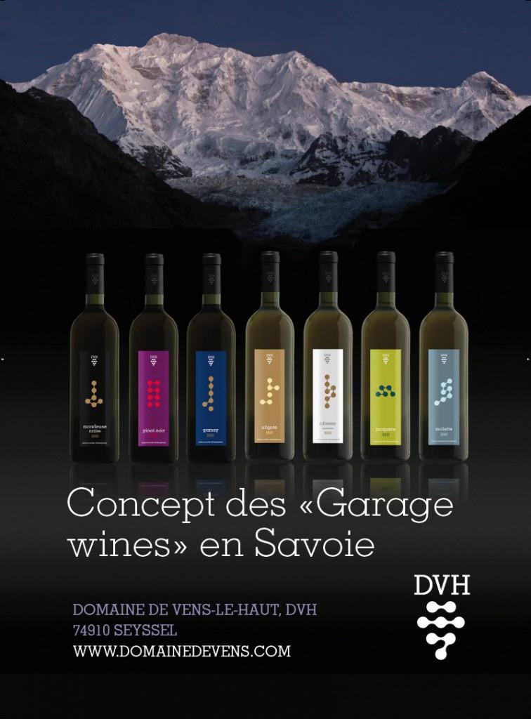 vins de montagne de l'arc apin savoyard et Mont Blanc
