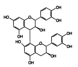 Procyanidine dimère
